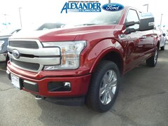 New 2019 Ford F-150 Platinum Truck 1FTEW1E54KFA96651 for sale in Yuma, AZ