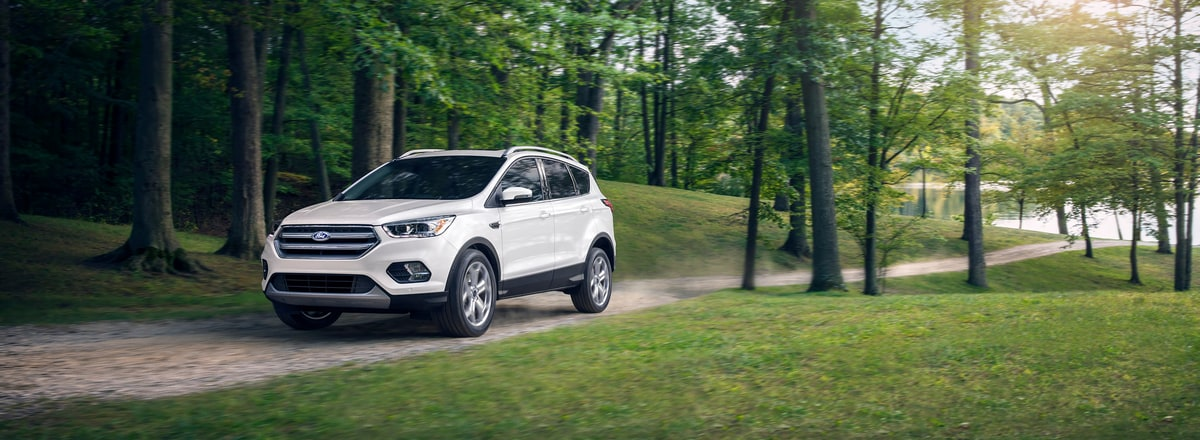 Ford Escape Lease >> 2019 Ford Escape For Sale In Livonia Mi Buy Or Lease A