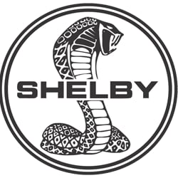 shelby3.png