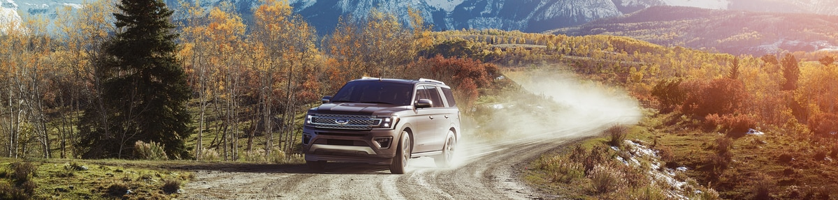 Ford Expedition Platinum SUV