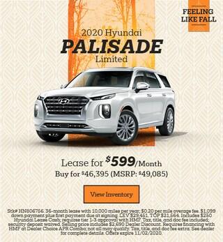 New 2020 Hyundai Palisade - October