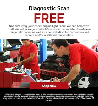 Free Diagnostic Scan Special