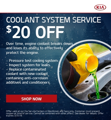 Coolant System Service