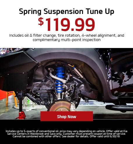 Spring Suspension Tune Up Special