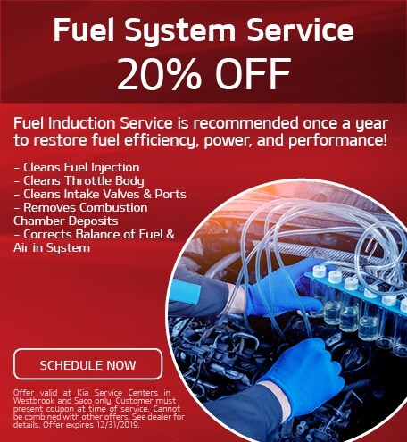 20% Off Fuel System Service