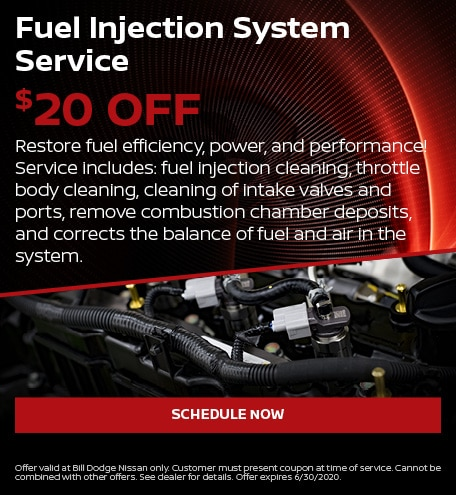 Fuel Injection System Service