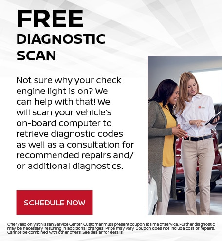 Free Diagnostic Scan