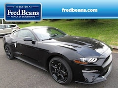 New 2019 Ford Mustang EcoBoost Coupe N90022 in Newtown, PA