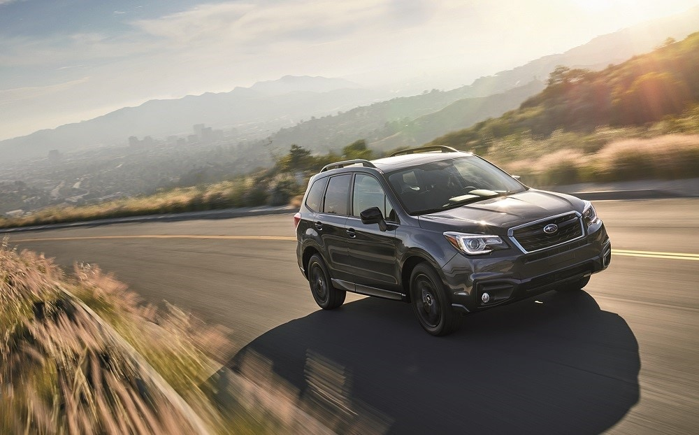 Forester Vs Rogue Performance