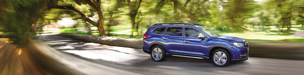 2019 Subaru Ascent Inventory near Syracuse