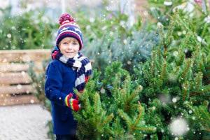 Family Owned Christmas Tree Farm