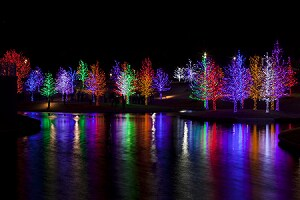 Holiday Lights Along a Lake