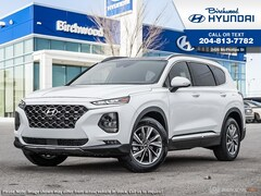 2019 Hyundai Santa Fe 2.0 Luxury SUV