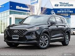 2019 Hyundai Santa Fe 2.0 Luxury Ext Color Pkg SUV