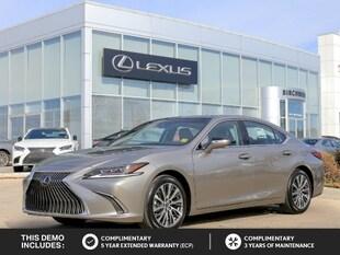 2019 LEXUS ES 350 Luxury Package Sedan