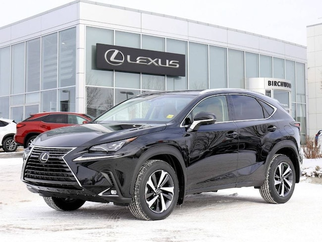 2019 LEXUS NX 300 Executive Package SUV