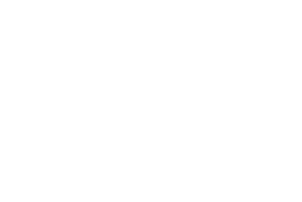 Bison Ford 2019 Model Sell Down Sales Event