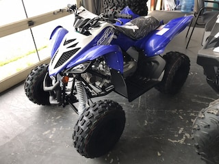 2019 Yamaha Rapton 90 ATV