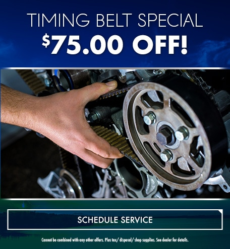 Timing Belt Special