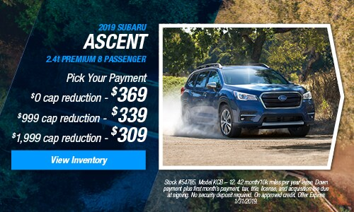 2019 Ascent