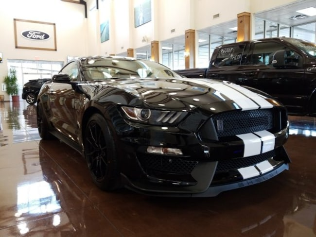 2019 Ford Mustang Shelby GT350 Shelby GT350 Fastback