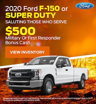 2020 Ford F-150 or Super Duty