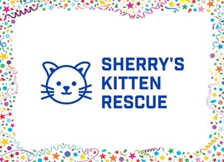 Sherry's Kitten Rescue