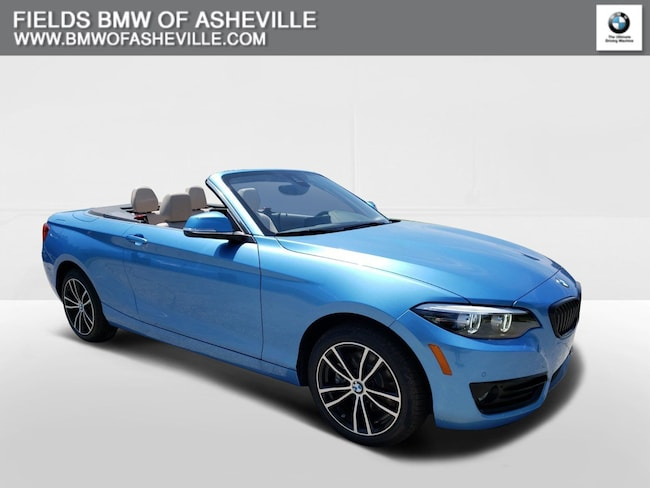 2020 BMW 230i xDrive Convertible DYNAMIC_PREF_LABEL_AUTO_NEW_DETAILS_INVENTORY_DETAIL1_ALTATTRIBUTEAFTER