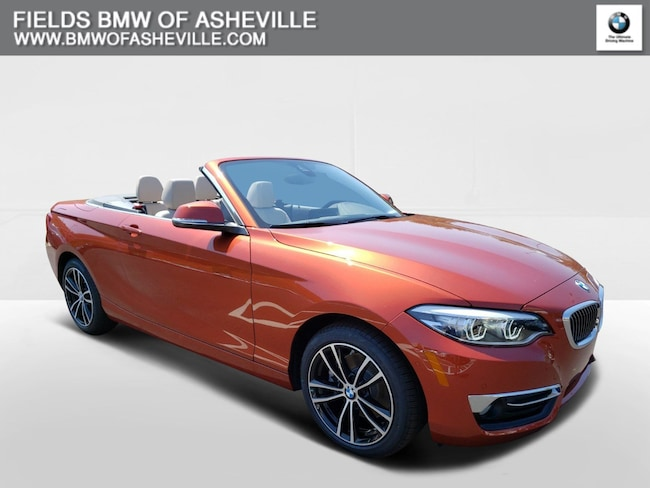 2020 BMW 230i Convertible DYNAMIC_PREF_LABEL_AUTO_NEW_DETAILS_INVENTORY_DETAIL1_ALTATTRIBUTEAFTER