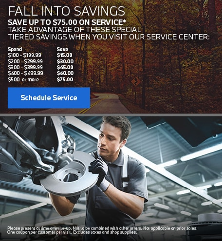SAVE UP TO $75 ON SERVICE