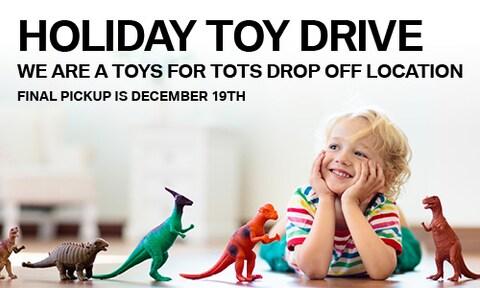 Holiday Toy Drive - November