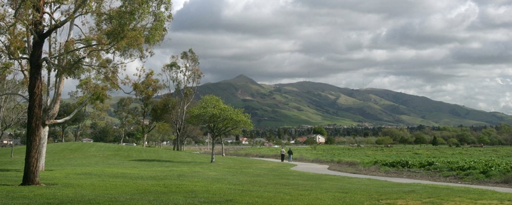 View of Fremont, CA