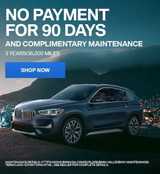 No Payment For 90 Days and Complimentary Maintenance