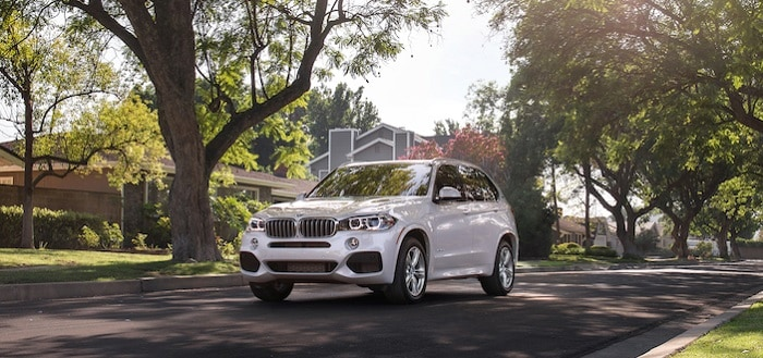 Looking For A Luxury Car In Macon Ga Bmw Of Macon Has What You