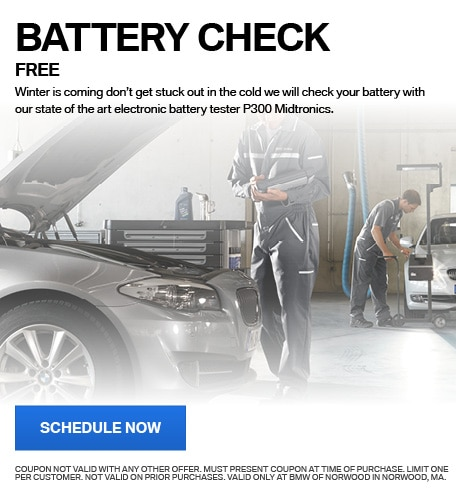 FREE BATTERY CHECK