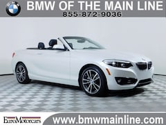 2019 BMW 2 Series 230i xDrive Convertible