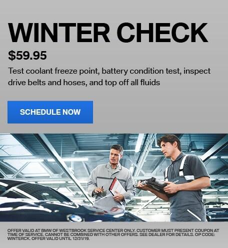 $59.95 Winter Check