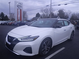 New Nissan for sale 2019 Nissan Maxima 3.5 SL Sedan N19161 in Danville, KY