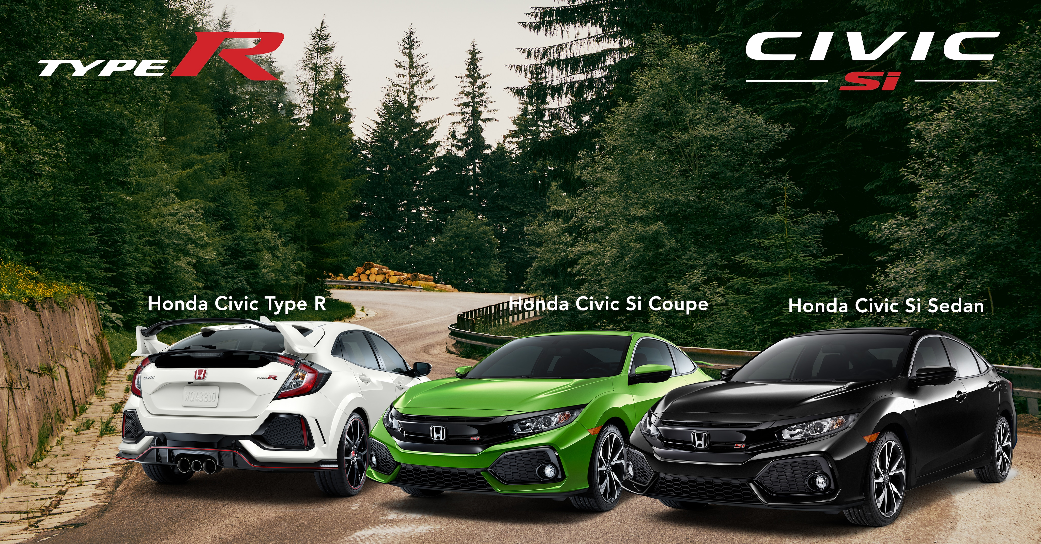 Lineup of the 2019 Civic Performance models on a scenic wooded road
