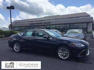2020 LEXUS ES 300h Luxury 300h Luxury Sedan