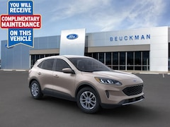 2020 Ford Escape SE Sport Utility for sale in the St. Louis area