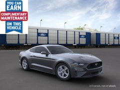 2020 Ford Mustang Ecoboost Coupe for sale in the St. Louis area