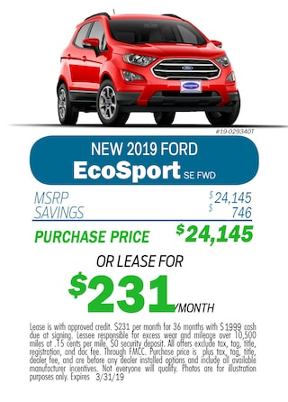 2019 EcoSport Monthly Special