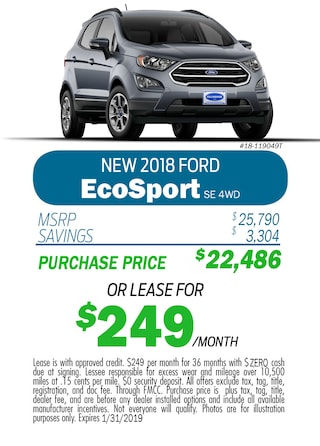 2018 EcoSport Monthly Special
