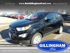 2020 Ford EcoSport SE (DEMO) SUV