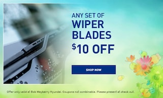 Any Set of Wiper Blades Special