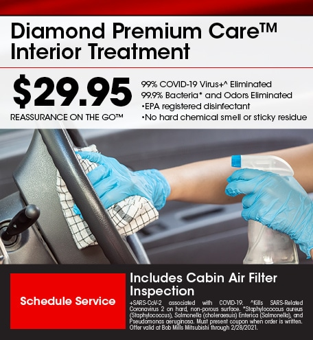 Diamond Premium Care™ Interior Treatment