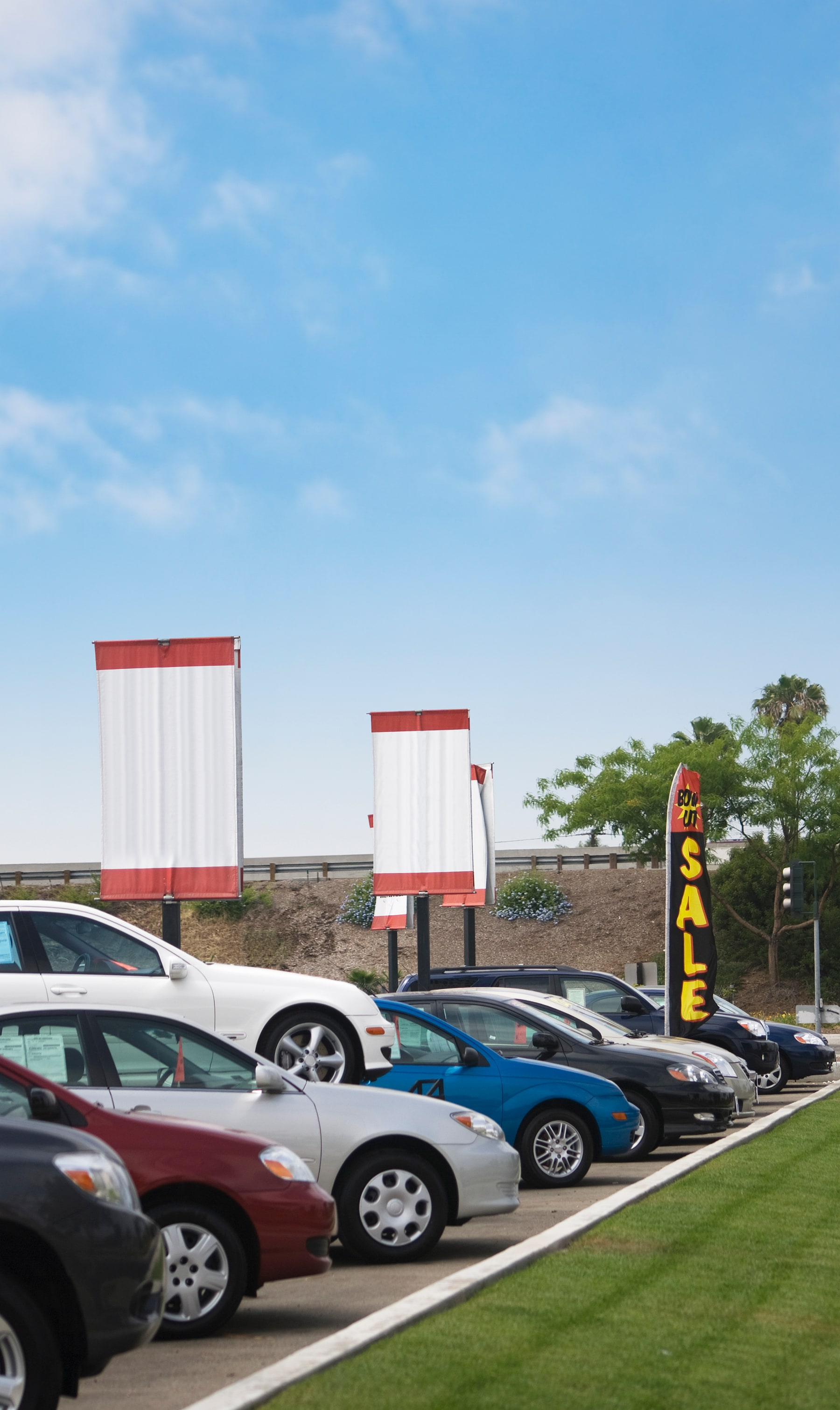 used vehicle lineup in a used car dealership