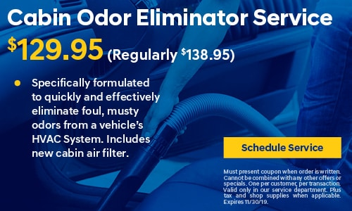 Cabin Odor Eliminator Service