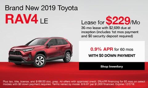 Brand New 2019 Toyota RAV4 LE
